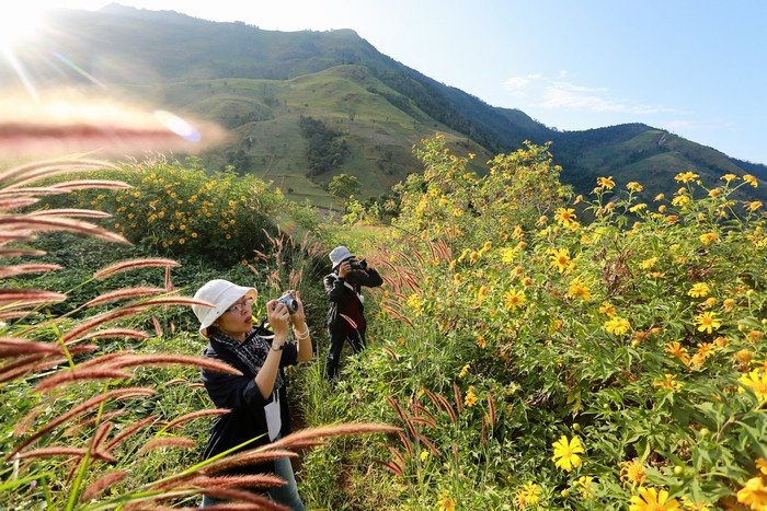 Những người lữ khách say mê săn ảnh dã quỳ dưới chân núi lửa Chư Đăng Ya