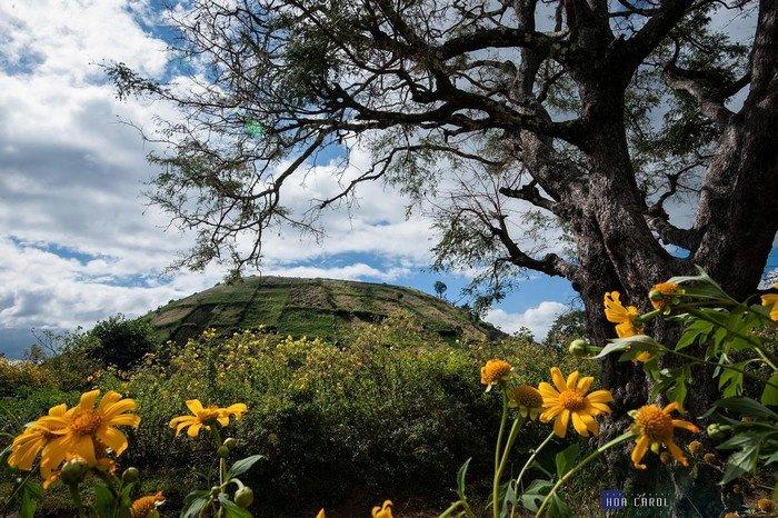 Có một Chư Đăng Ya đẹp diệu kỳ khiến bao người mê đắm trong dịp du ngoạn phố núi Pleiku