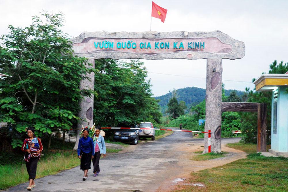 Vườn quốc gia Kon Ka Kinh. (Ảnh ST)