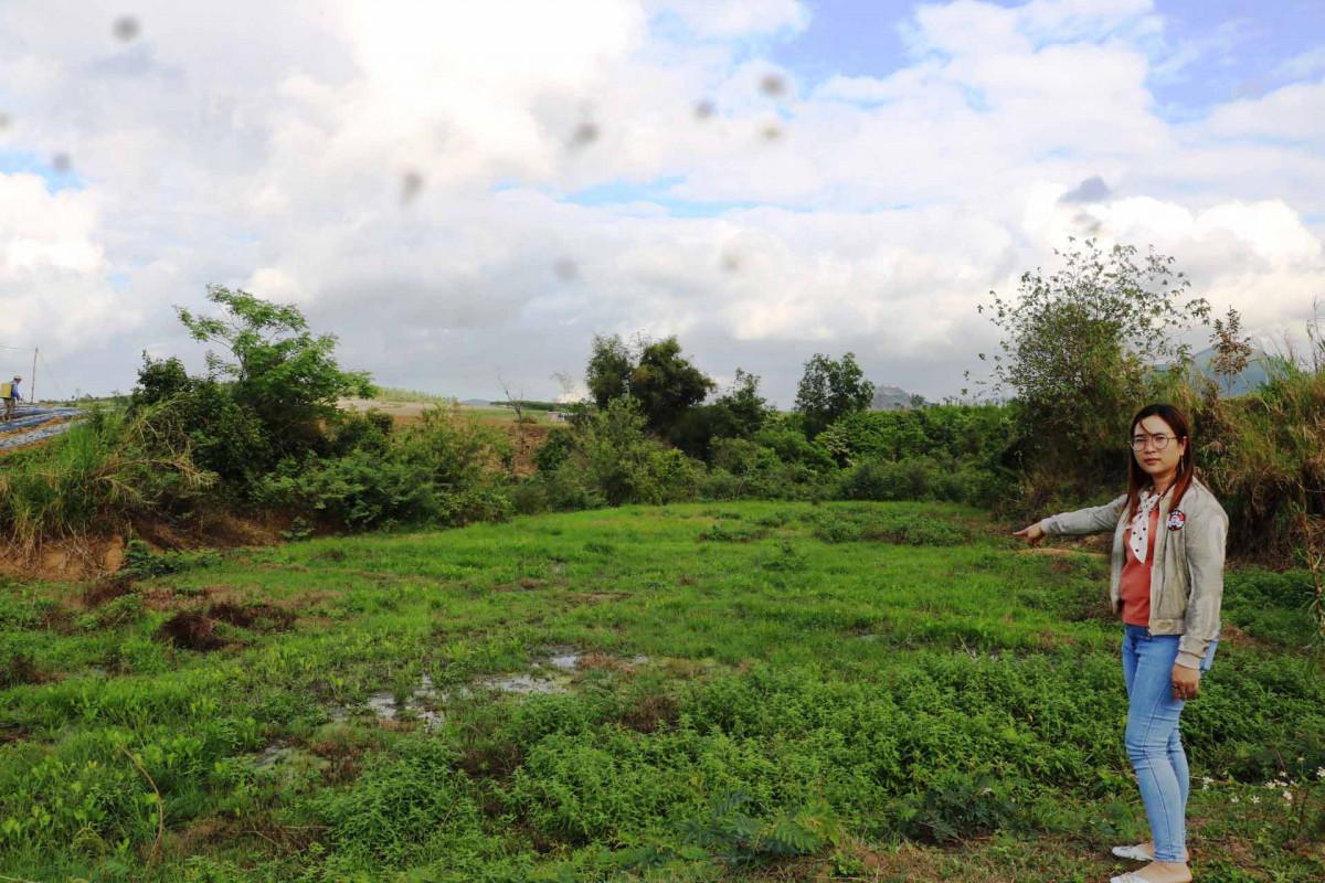 Cảnh báo ô nhiễm nguồn nước mặt ở Gia Lai Kỳ 1: Ô nhiễm cục bộ